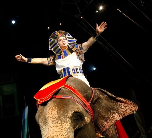 Nghệ sĩ Tống Toàn Thắng trong một tiết mục biểu diễn xiếc voi