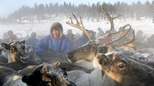 Những tour khám phá động vật hoang dã hấp dẫn nhất thế giới - 3