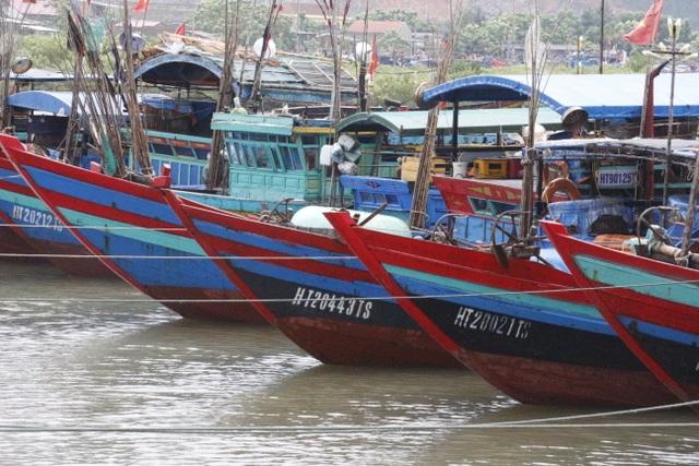 Bão số 2 gây mưa lớn, biển động mạnh tại Hà Tĩnh - 3