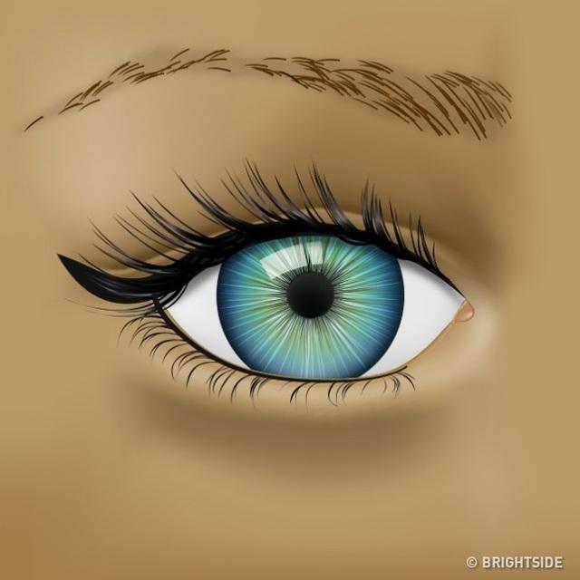 Đôi mắt đang cố gắng cho bạn biết những vấn đề sức khỏe nào? - 2