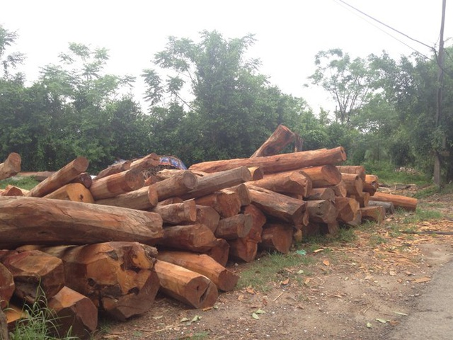 Những cây gỗ không đủ độ dài tiêu chuẩn làm cột nhà chỉ dùng đóng đồ nội thất hoặc các vật dụng khác.