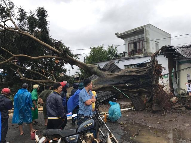 Hơn 10 người thiệt mạng, nhiều người mất tích do bão số 12 - 7