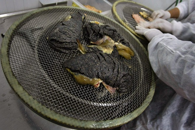 Mục sở thị món ăn xa xỉ bậc nhất hành tinh: Trứng cá tầm giá bạc tỷ - 9
