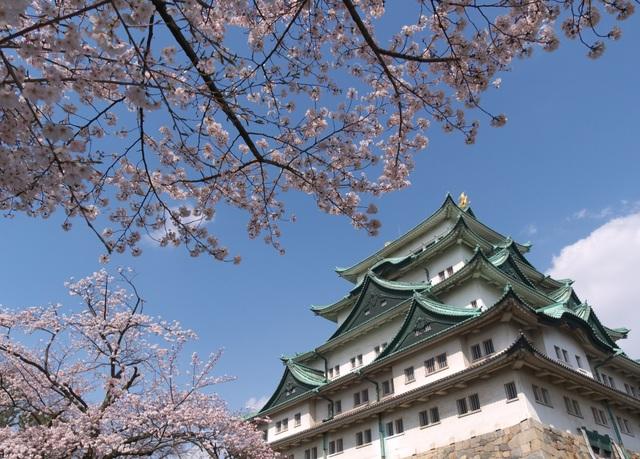 Khám phá Nhật Bản qua 3 thành phố Tokyo, Kyoto và Nagoya - 3