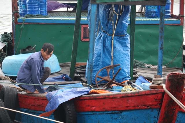 Đến nay, các tàu thuyền đã nhận được thông báo và tìm được nơi neo đậu an toàn