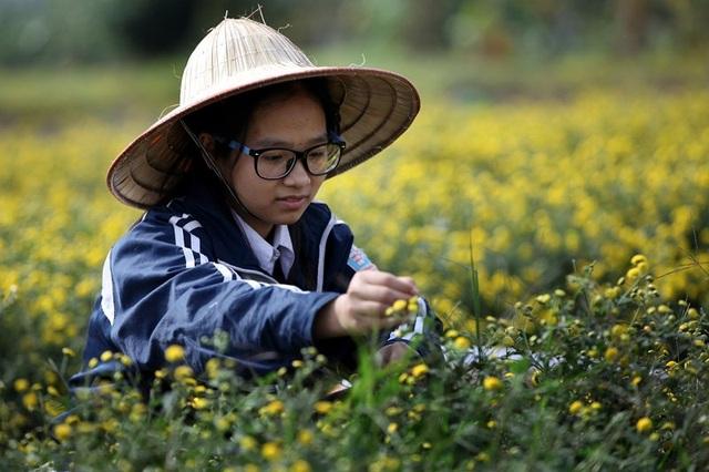 Nữ sinh nườm nượp rủ nhau kiếm tiền trên cánh đồng đẹp như mơ - 4