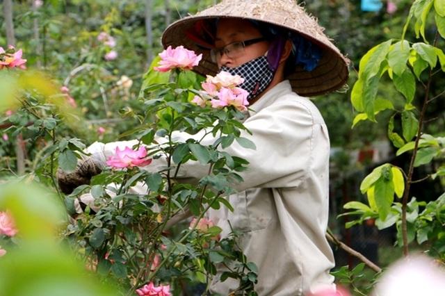 Điểm đến hấp dẫn cho người đam mê hoa hồng dịp 30/4 tại Hà Nội - 5