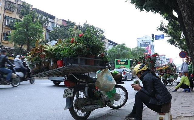 Không chỉ có ô tô dừng đỗ trái phép gây cản trở giao thông, một số hàng rong hoa quả, cây cảnh cồng kềnh cũng dừng bán hàng ngay bên đường, chiếm gần hết một làn xe.