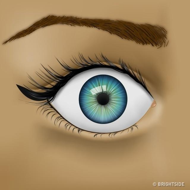Đôi mắt đang cố gắng cho bạn biết những vấn đề sức khỏe nào? - 5