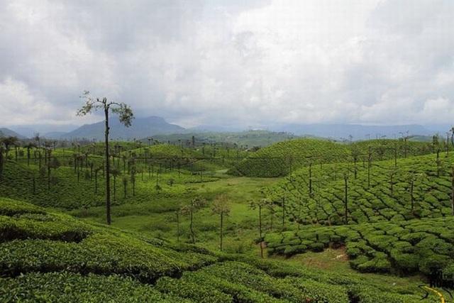 9 thắng cảnh thiên nhiên tuyệt đẹp ở Ấn Độ - 6