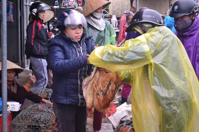 Gà nuôi thả rông được bán để phục vụ việc cúng gia tiên trong dịp Tết