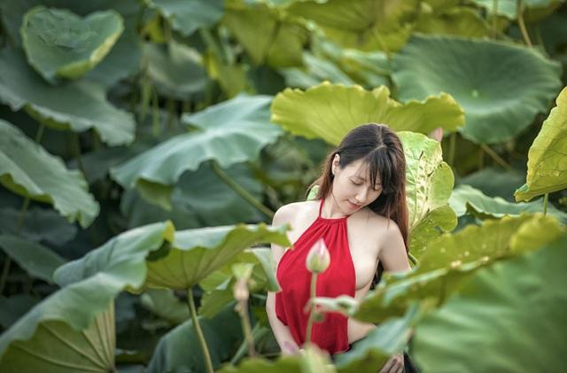 Nét xuân thì của thiếu nữ hiển hiện giữa đầm sen mướt mắt (ảnh: Huy Hoàng Đoàn)
