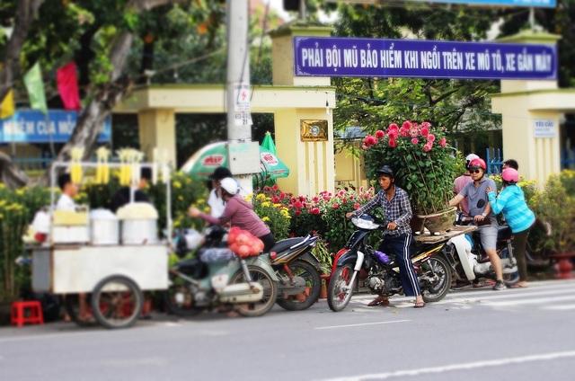 Người dân ở Nha Trang hối hả chở xuân về nhà trước thềm năm mới Đinh Dậu