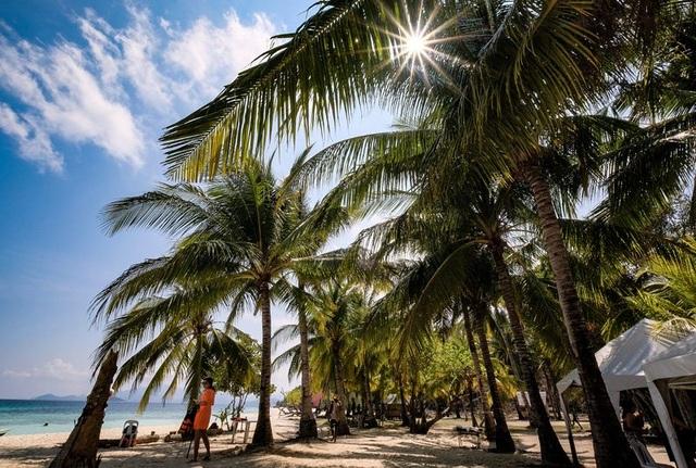 Trải nghiệm của du khách Việt ở 'thiên đường' lặn mê hoặc cả thế giới - 10