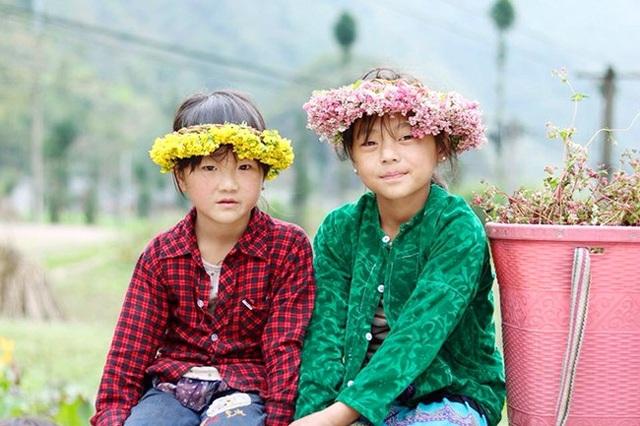 """""""Phát cuồng"""" vẻ đẹp hoa tam giác mạch bung nở trên sườn núi đá Hà Giang - 10"""