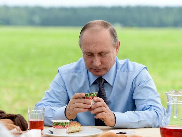 Khi đi công du nước ngoài, lịch trình của ông Putin thường vô cùng chặt chẽ. (Ảnh: Sputnik)