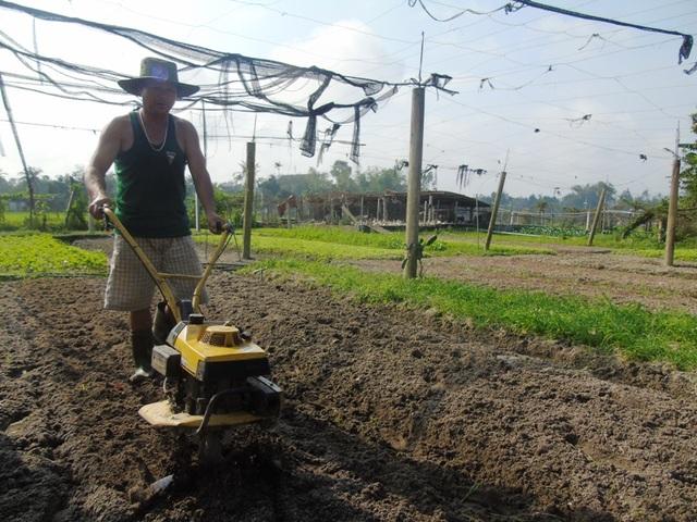 Nhận thấy sự hiệu quả trong trồng rau, anh Trần Minh Tấn, tại thôn Tú Loan 3 đã mở rộng diện tích, đầu tư máy móc để sản xuất.
