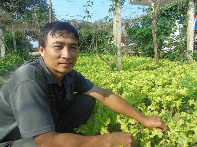 Việc trồng rau xanh cung ứng ra thị trường giúp nhiều gia đình có thu nhập hàng chục triệu đồng mỗi tháng