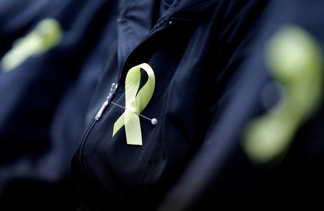 Dải ruy băng vàng dùng để tưởng nhớ các nạn nhân trong vụ chìm phà Sewol. (Ảnh: Getty)