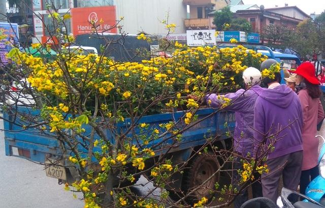 Chợ quê nhộn nhịp, người dân đội mưa mang hương sắc Tết về nhà - 2