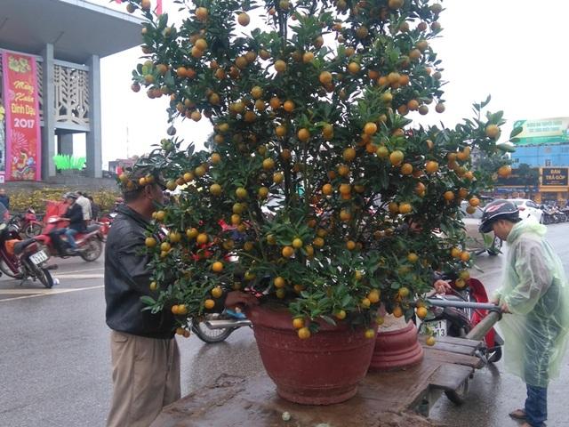 Chợ quê nhộn nhịp, người dân đội mưa mang hương sắc Tết về nhà - 3