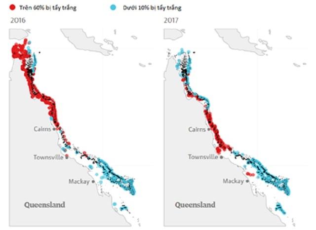Hiện tượng tẩy trắng san hô tại rạn san hô Great Barrier Reef trong hai năm 2016, 2017 (nguồn: The guardian)