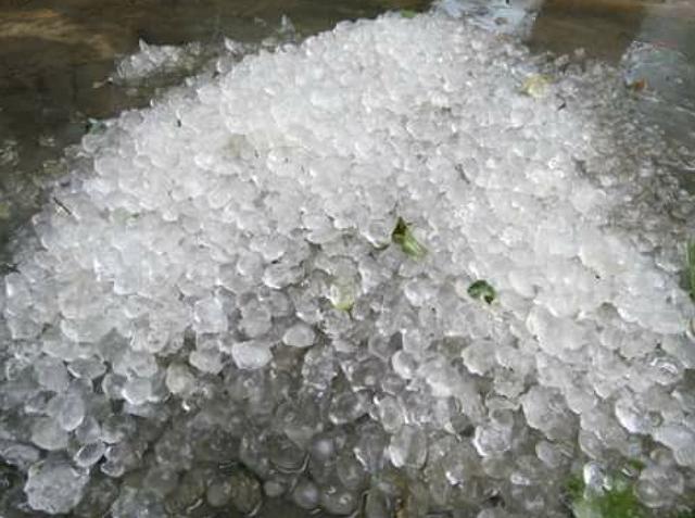 Mưa đá xuất hiện rơi trắng dường khu vực xã Bảo Hà, huyện Bảo Yên (tỉnh Lào Cai) hồi 10h30, ngày 25/3/2017.