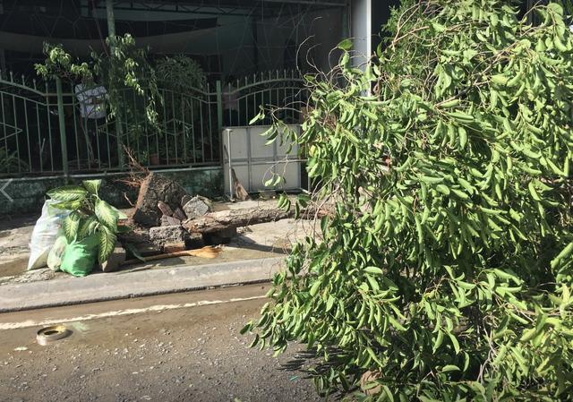 Thị xã Ninh Hoà bị biển nước bao vây, mất điện diện rộng - 7