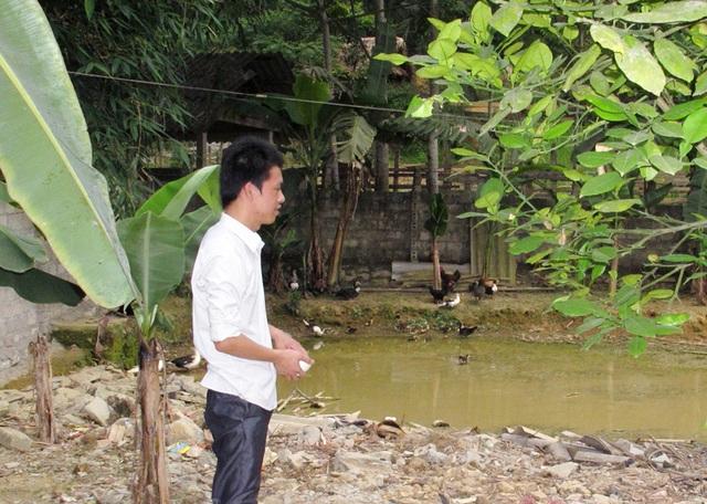 Không ít cử nhân miền núi Nghệ An không được bố trí việc làm, đành ở nhà chăn nuôi phụ giúp bố mẹ (ảnh Hoàng Tùng).