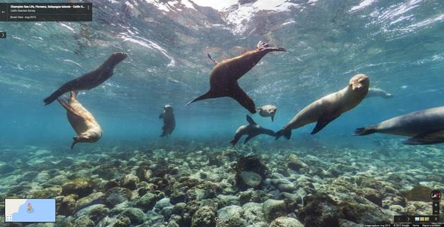 Đảo Galápagos Islands ở Ecuador.