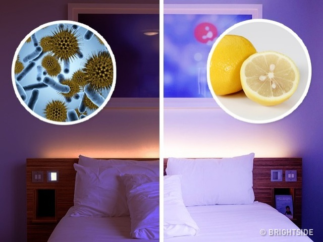 Lý do bạn nên đặt một miếng chanh trong phòng ngủ mỗi ngày - 4
