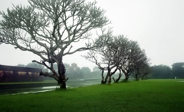 5 thành phố vẫn đẹp cả trong mưa - 2