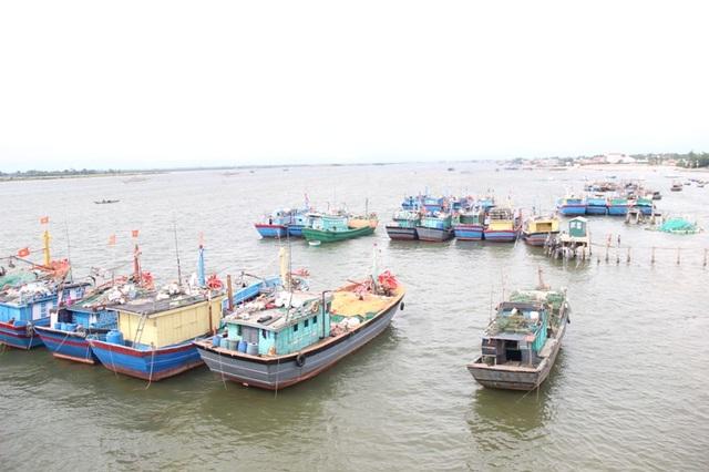 Nhiều tàu thuyền không ra khơi mà neo đậu tại cảng