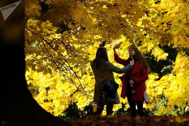 Nga vốn tự hào là một trong những nơi đón mùa thu vàng đẹp nhất thế giới. Và những cô gái trẻ không quên chụp lại khoảnh khắc được mong chờ nhất trong năm với hàng cây chuyển màu lá tại công viên Kolomenskoye ở thủ đô Moscow.