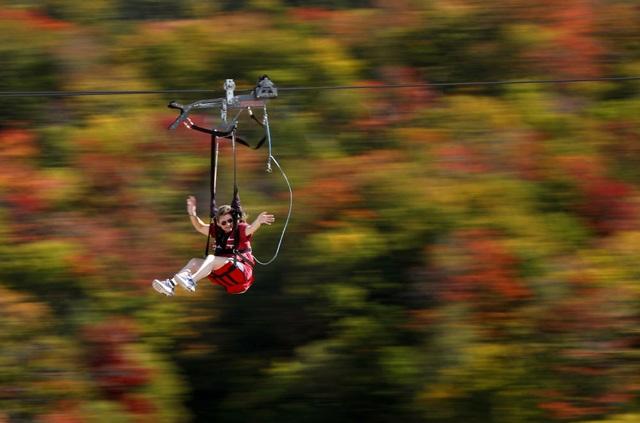 """Cô gái trẻ đang trải nghiệm trò zipline khi băng qua vùng núi Wildcat đang """"chuyển mình"""" sang thu tại Pinkham Notch, New Hampshire, Mỹ."""