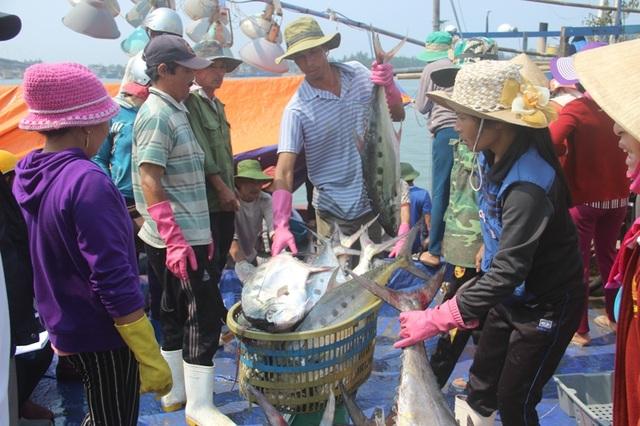Ngay sau khi vào bờ, cá trên tàu đã được các tiểu thương thu mua hết