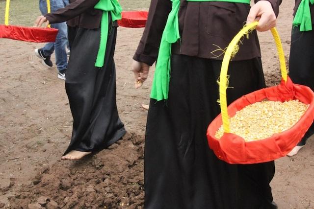 Theo sau vua là đoàn gieo hạt giống bao gồm đỗ xanh, ngô, lạc và thóc