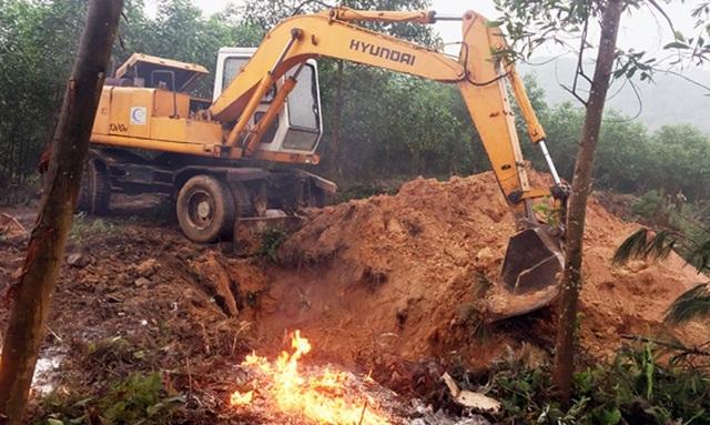 Cơ quan chức năng huyện Hương Khê và chính quyền Gia Phố cho đào hố tiêu hủy toàn bộ số lợn bị dịch LMLM của gia đình anh Hiệp.