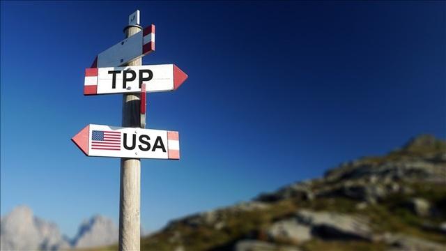 Giới chuyên gia kỳ vọng TPP 11 sẽ có triển vọng đột phá trong Tuần lễ Cấp cao APEC tại Đà Nẵng.