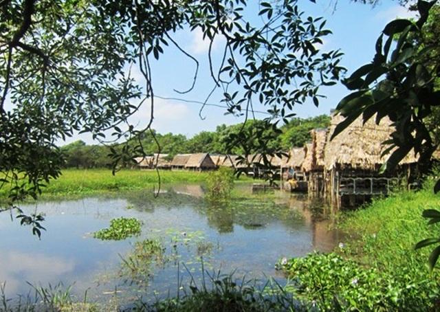 Khu du lịch sinh thái Trằm Trà Lộc (Ảnh: Internet)