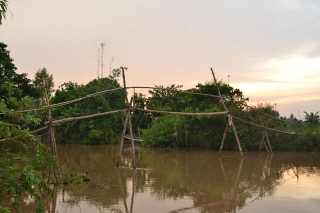Những cây cầu khỉ đặc trưng của vùng sông nước.