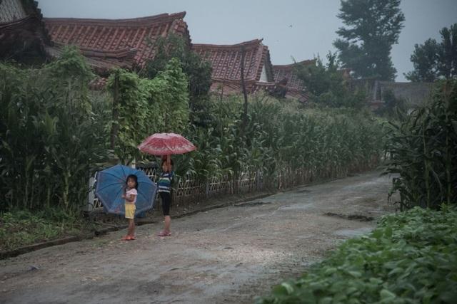 Hai em nhỏ đứng dưới mưa tại một ngôi làng ở ngoại ô Sinchon, phía nam Bình Nhưỡng.