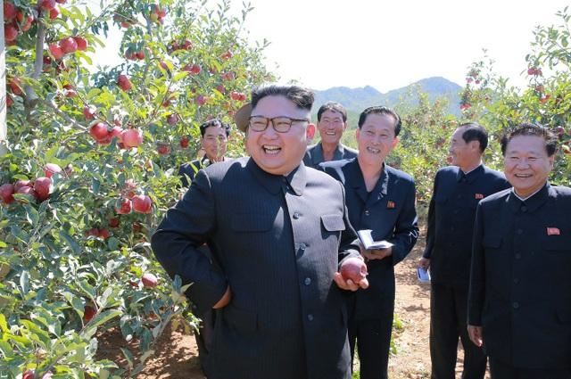 """Triều Tiên đã """"làm ăn"""" với ít nhất 80 quốc gia trong gần 20 năm qua. (Nguồn: CNBC)"""