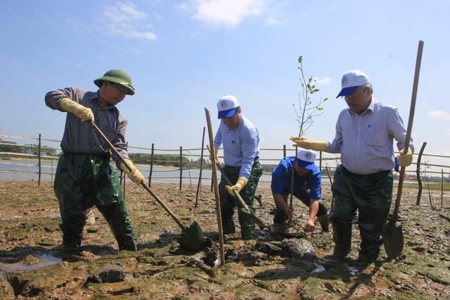 Ông Hà Sỹ Đồng, Phó Chủ tịch UBND tỉnh Quảng Trị (thứ 2, bên trái) trồng cây rừng ngập mặn