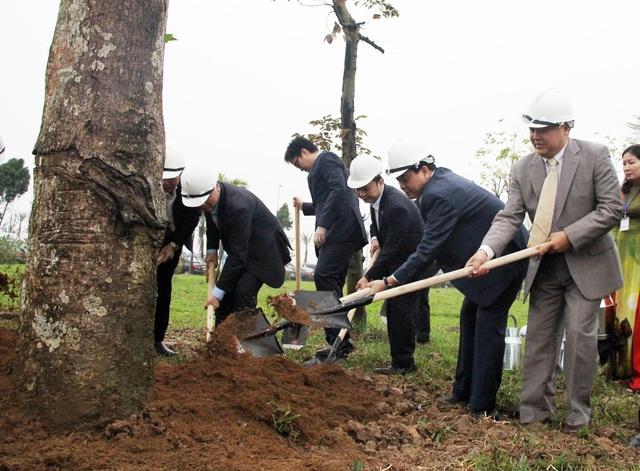 Hà Nội đặt mục tiêu trồng gần nửa triệu cây xanh trong năm 2017