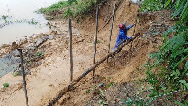 Gia cố tạm thời bờ sông bị sạt lở trước trường Tiểu học Hương Thọ 1.
