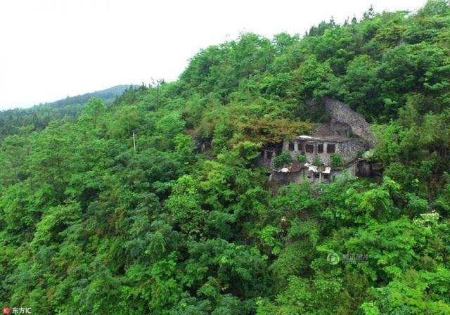 Ngôi mộ của người đàn ông cô độc trong rừng