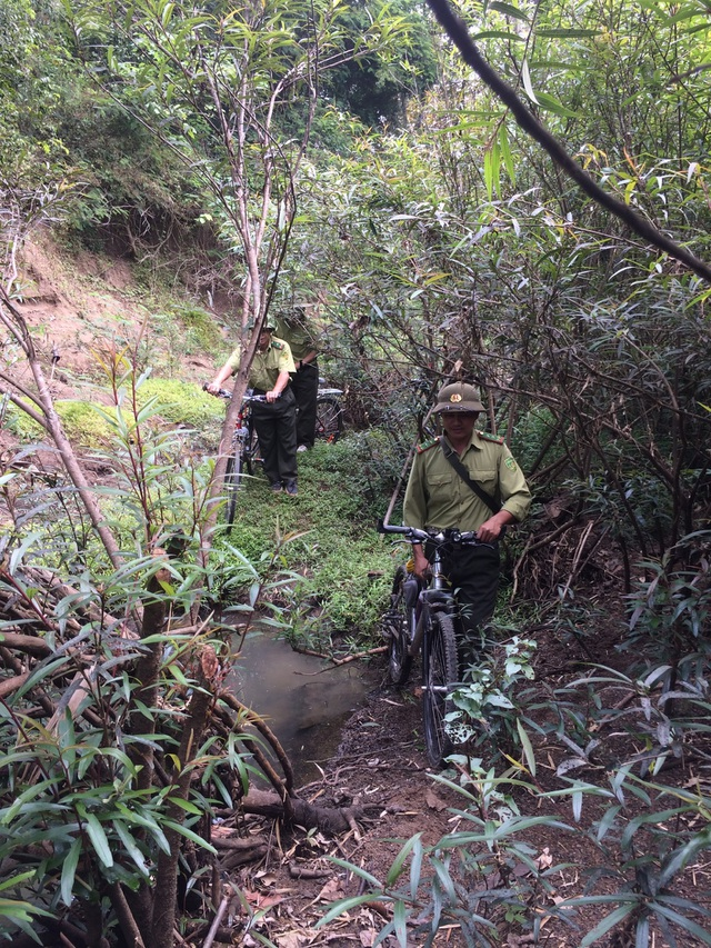 Song hành với việc tuần tra rừng, cán bộ sẽ giám sát sự đa dạng sinh học trong rừng (ảnh Vương Quốc)