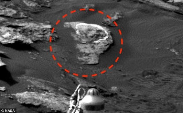 Tuy nhiên, nếu quan sát gần, có thể nhận thấy Waring đã thực hiện một số thay đổi so với bức ảnh gốc.