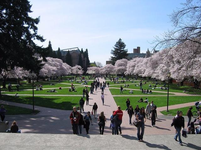 Đại học Washington.